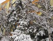 Tél a városban