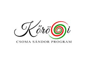 40962-16504-korosiprogram