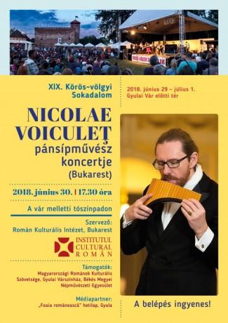 A3_Plakat_Nicolaie_Voiculet_2018_hu